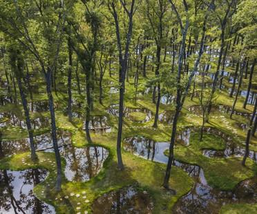 El poético jardín de Junya Ishigami gana la primera edición del Obel Award