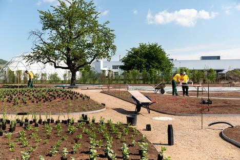 Piet Oudolf proyecta el Perennial Garden del Vitra Campus de Weil am Rhein