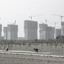 Exposición China Goes Urban. La nueva época de la ciudad en el MAO Turín