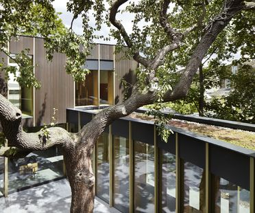 Pear tree house de Edgley Design en Dulwich, Londres