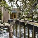 Pear tree house de Edgley Design en Dulwich, Londres