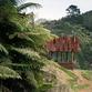 K Valley house di Herbst Architects: rifugiarsi in Nuova Zelanda