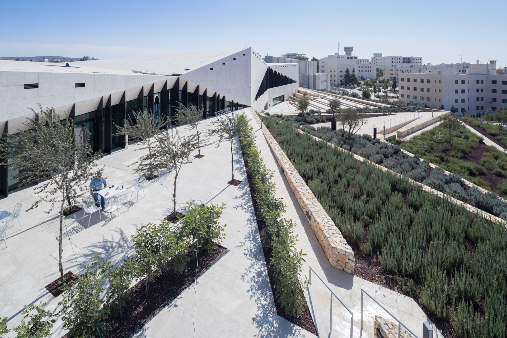 Heneghan Peng Architects: El museo de Palestina en Birzeit
