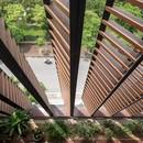 "H&P Architects: casa-tubo y ""caverna tropical"" en Vietnam"