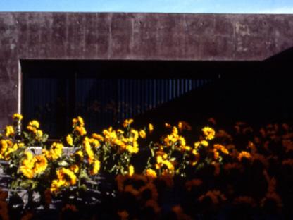 Concert Stadium. Vitrolles (Francia). Rudy Ricciotti. 2000