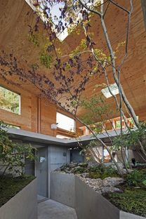 UID architects: Nest, el bosque como casa
