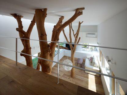 Ogawa: naturaleza y arquitectura en la casa con árboles en Kagawa