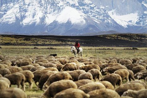 Photo Hotel Tierra Patagonia