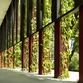 OASIA HOTEL Rascacielos verde en Singapur – WOHA Architects