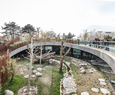 Encofrado de bambú para la Panda House Yin Yang, por BIG